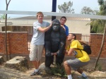 Reid, Jarret, and Jon with Gorilla